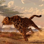 "Daniel Eskridge ""Speeding Cheetah"" image and tutorial!"