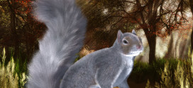 DAZ Squirrel preset from Alia!