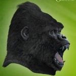 DAZ Gorilla: let's give him some fur!
