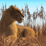 """Lioness in the grass"" by Elle"