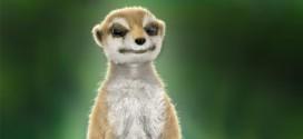 Meerkat: larger render