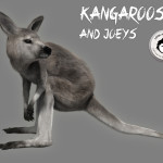 Kangaroos and Joeys released!