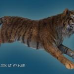 tiger2 wet