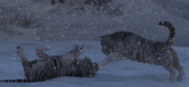 """""""Tigers in the winter"""" by Kees!"""