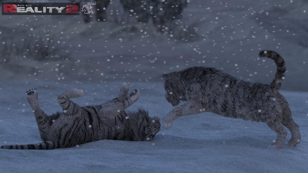 tigers_in_winter02_by_grassie73-d5vpjrw