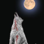 Howl to the moon…